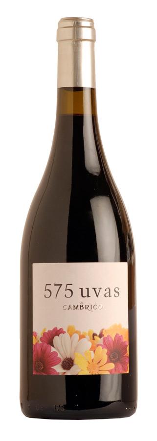 575 Uvas de Cámbrico