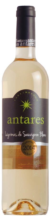 Antares Lágrimas de Sauvignon Blanc Fermentado en Barrica
