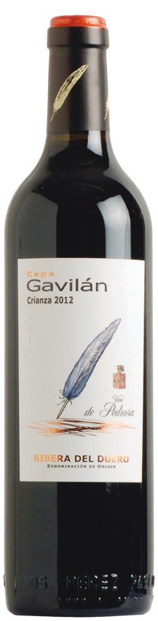 Cepa Gavilán
